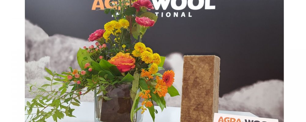 Agra-Wool Natural Floral Foam in Flowers Magazine
