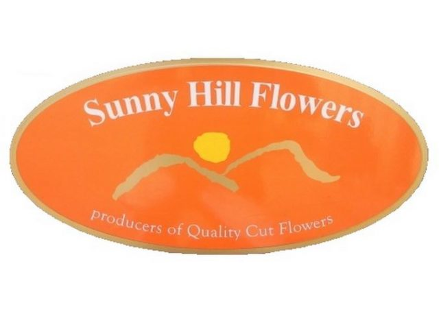 Sunny Hill Flowers